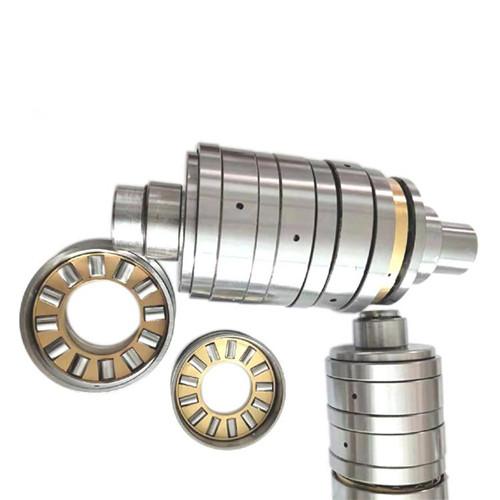 Plastic extruder bearings series bearings